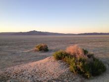 Morning on the Black Rock Desert